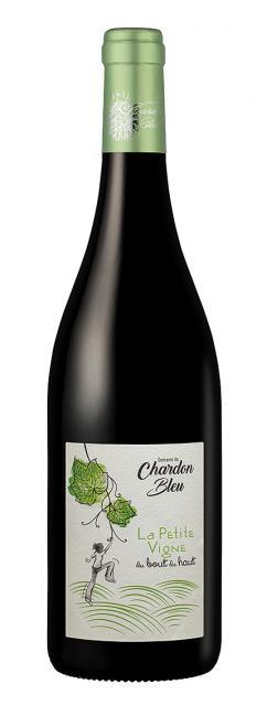Domaine du Chardon Bleu, La petite vigne du Bout du Haut, Vin de France, Rouge, 2020