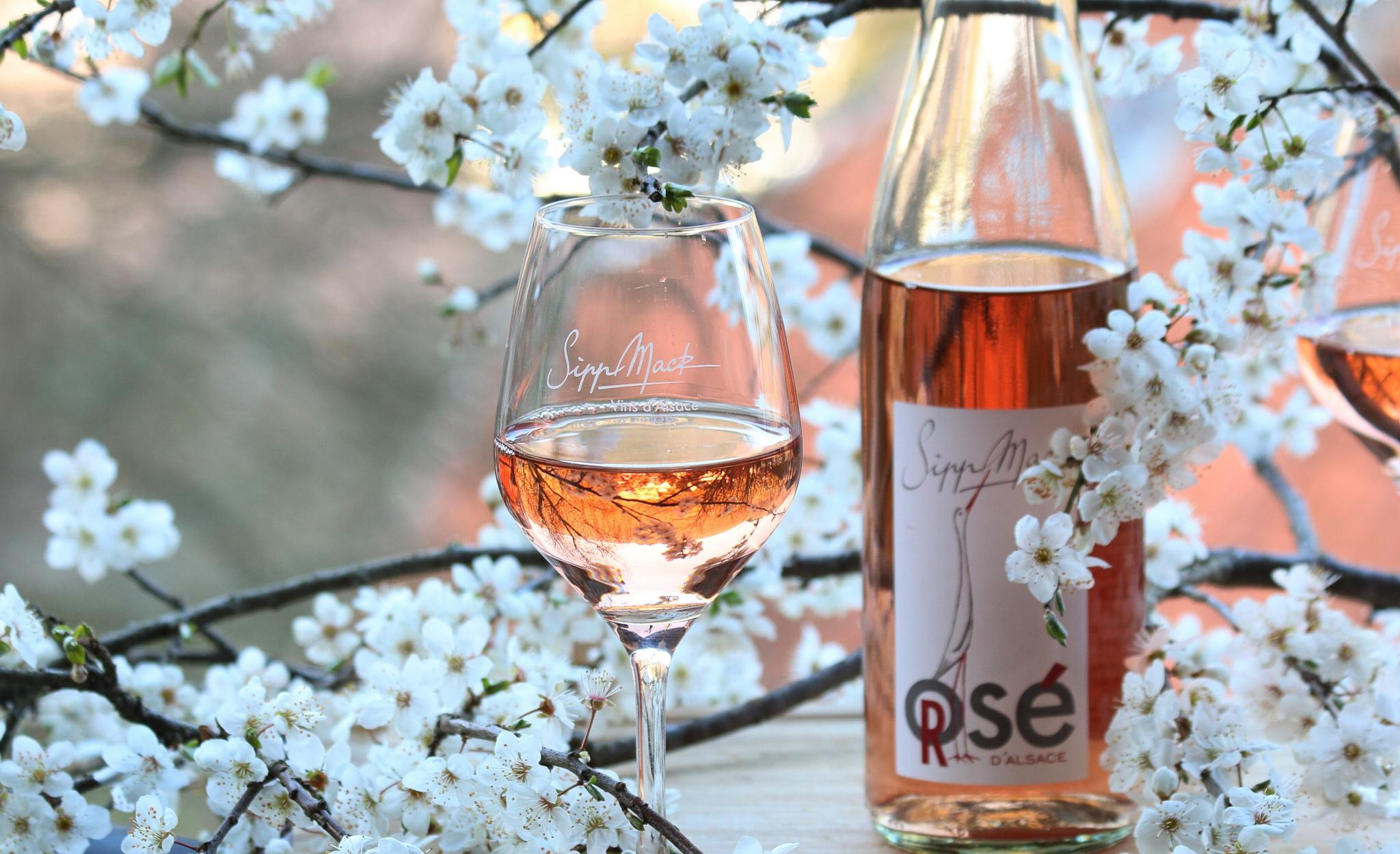 Rosé and cherry blossoms