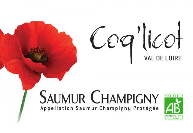 Saumur Champigny Rouge BIO
