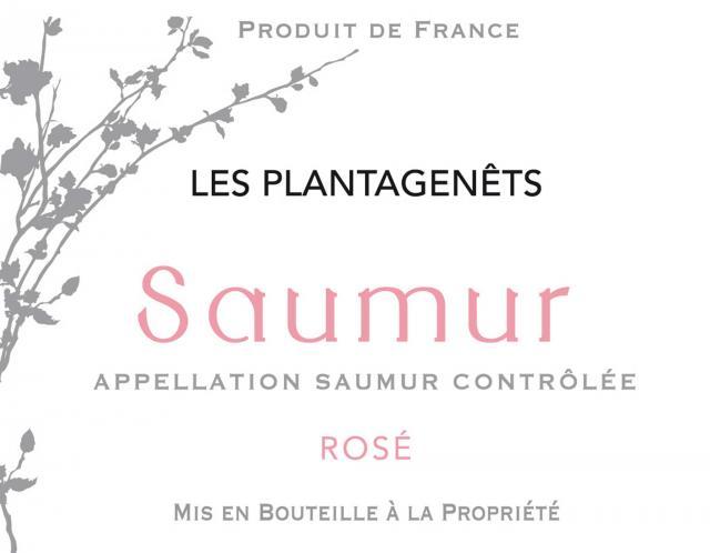 Saumur Rose Les Plantagenets