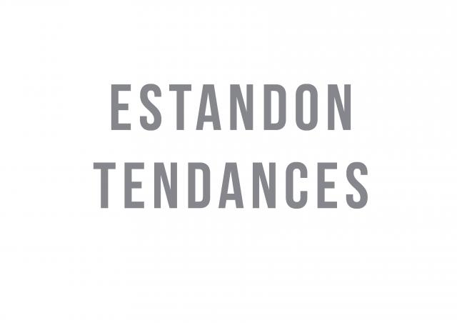 Logo Estandon Tendances