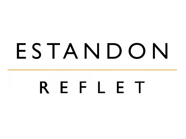 Logo Estandon Reflet