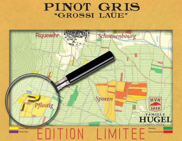 GROSSI LAUE PINOT GRIS sm