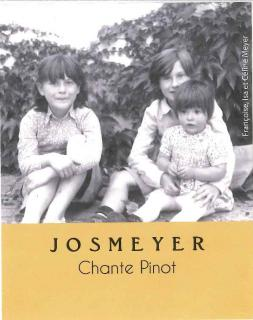 JOSMEYER, PETILLANT NATUREL, CHANTE PINOT, Vin de France, Effervescent Sec, 2019